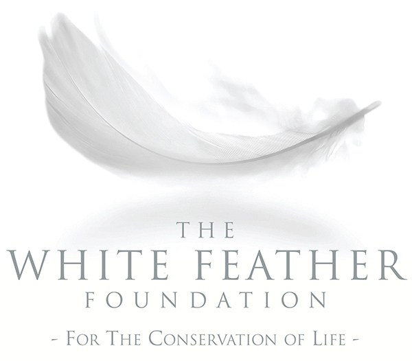 WFF-Conservation-of-Life