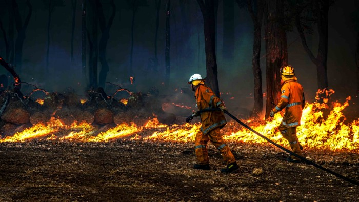 organizations fighting australia fires