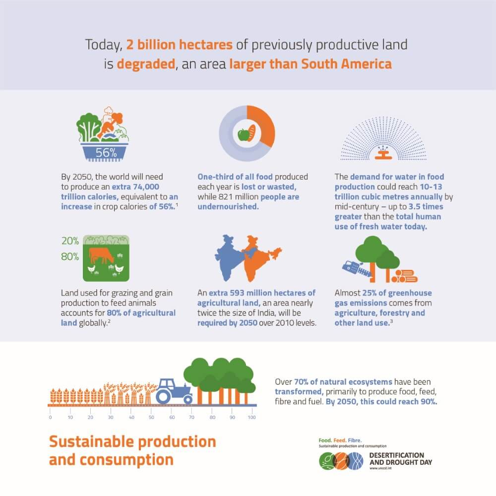 Desertification and Drought Infographic